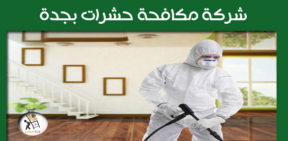 شركة مكافحة حشرات في جدة