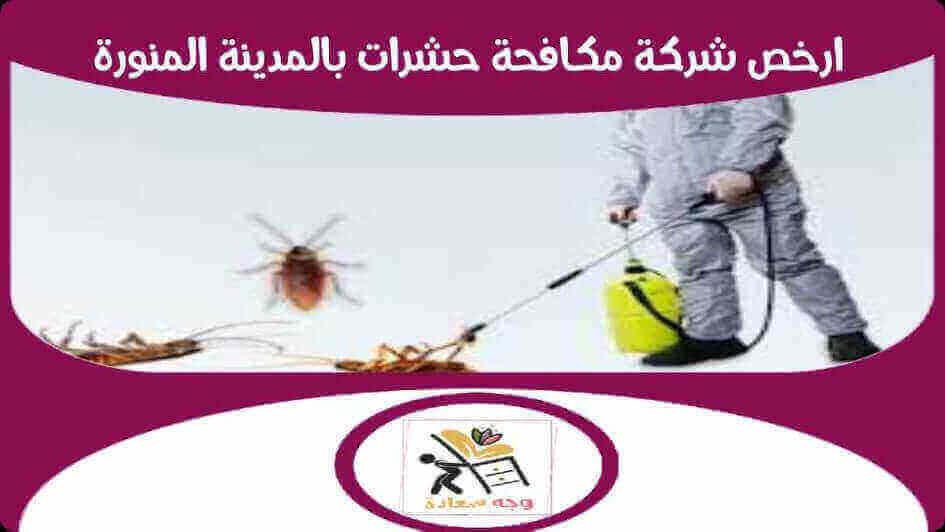 ارخص شركة مكافحة حشرات بالمدينة المنورة بخصم 30%